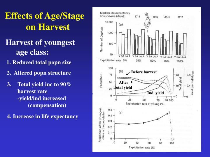 Effects of Age/Stage