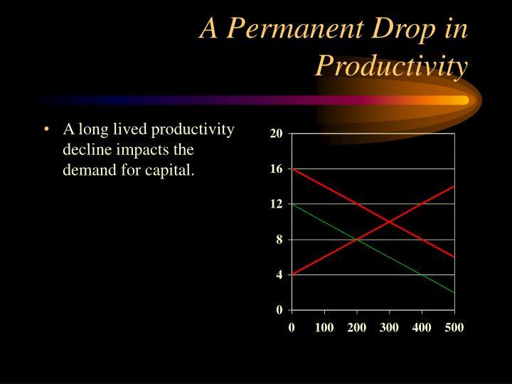 A Permanent Drop in Productivity