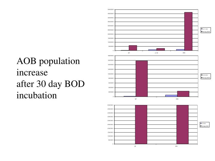 AOB population increase