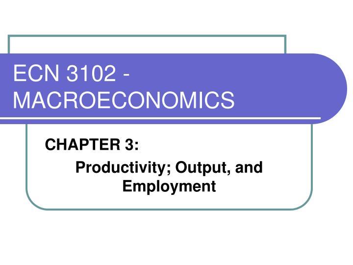 ECN 3102 - MACROECONOMICS