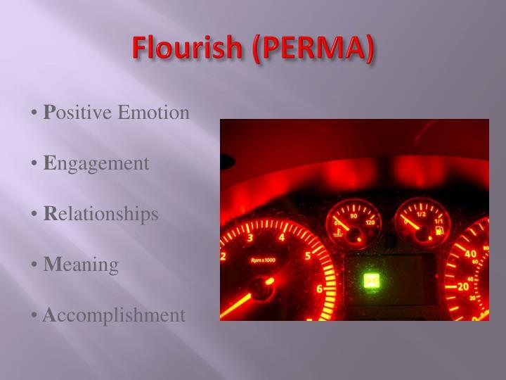 Flourish (PERMA)