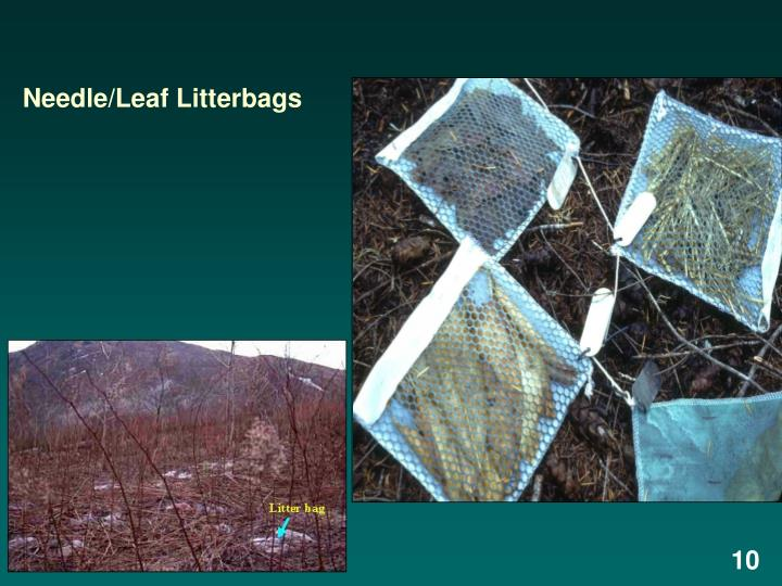 Needle/Leaf Litterbags