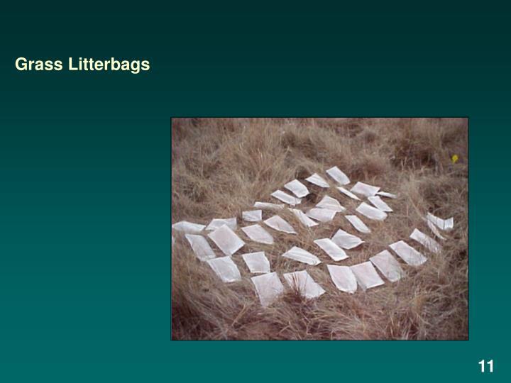 Grass Litterbags
