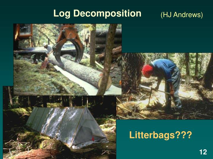 Log Decomposition