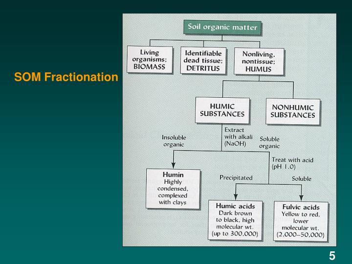 SOM Fractionation