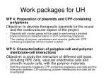 work packages for uh