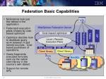 federation basic capabilities