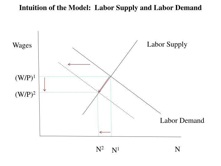 Intuition of the Model:  Labor Supply and Labor Demand