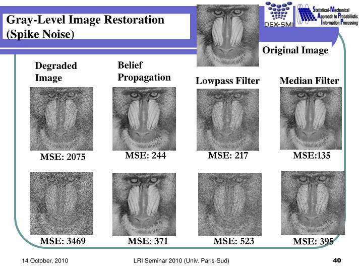 Gray-Level Image Restoration