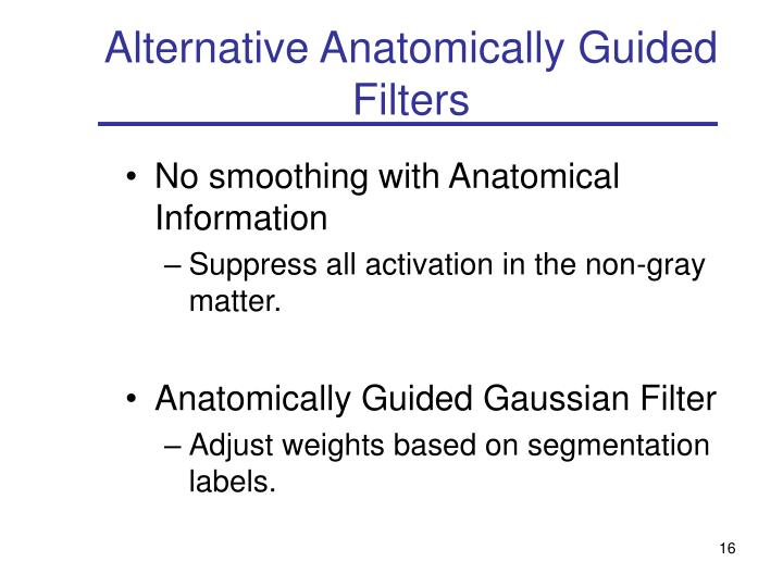 Alternative Anatomically Guided Filters