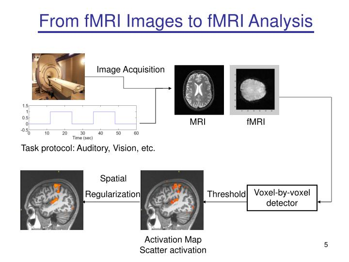 From fMRI Images to fMRI Analysis