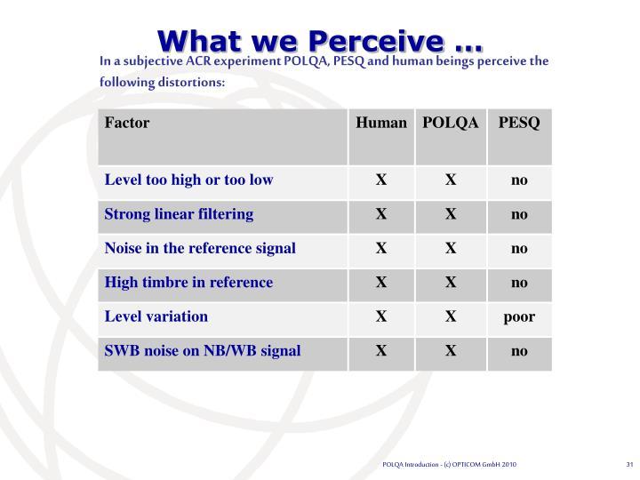 What we Perceive …
