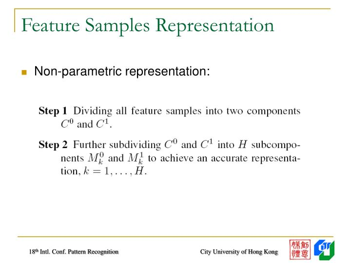 Feature Samples Representation