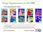 image segmentation via ns mrf1