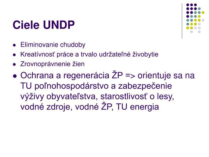 Ciele UNDP