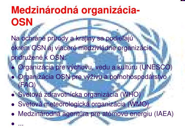 Medzinárodná organizácia- OSN