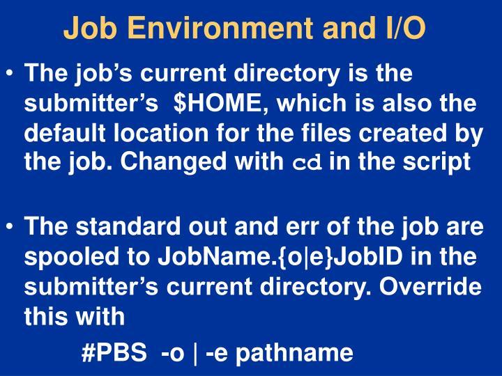 Job Environment and I/O