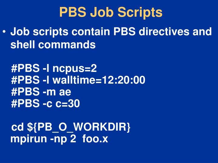 PBS Job Scripts