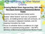 icn workshop other market criteria5
