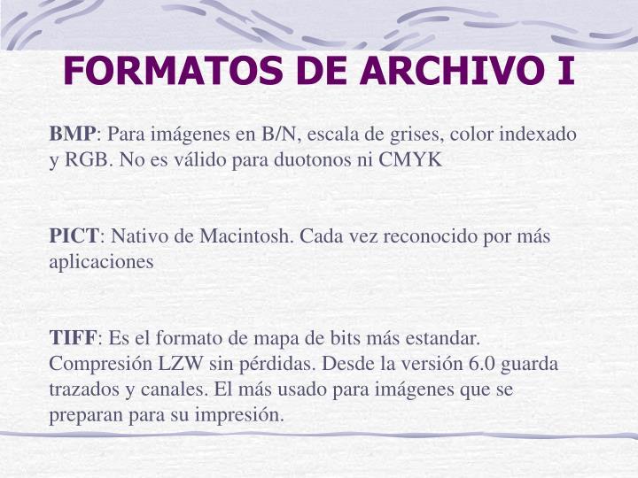 FORMATOS DE ARCHIVO I
