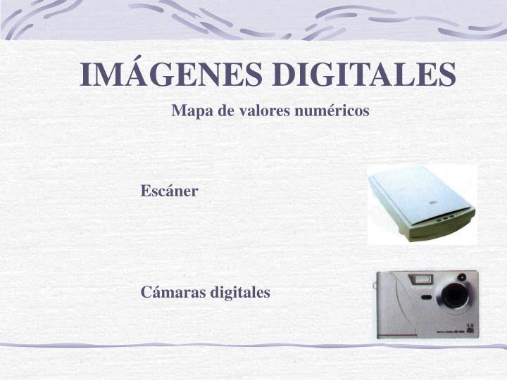 IMÁGENES DIGITALES