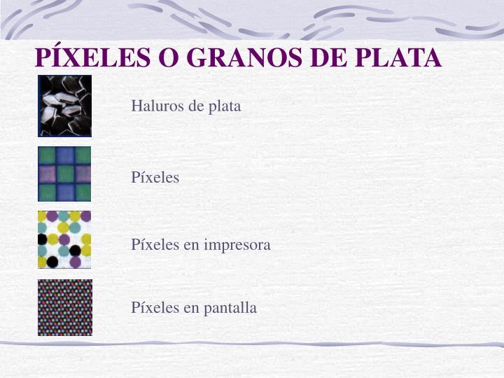 PÍXELES O GRANOS DE PLATA
