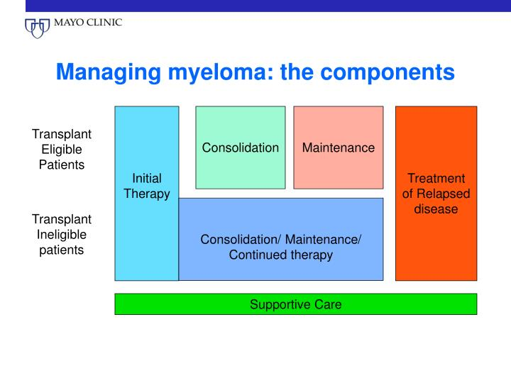 Managing myeloma the components
