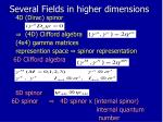 several fields in higher dimensions