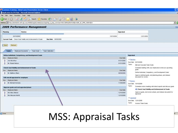 MSS: Appraisal Tasks