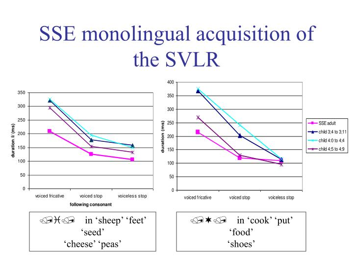 SSE monolingual acquisition of the SVLR