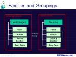 families and groupings1