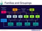 families and groupings2