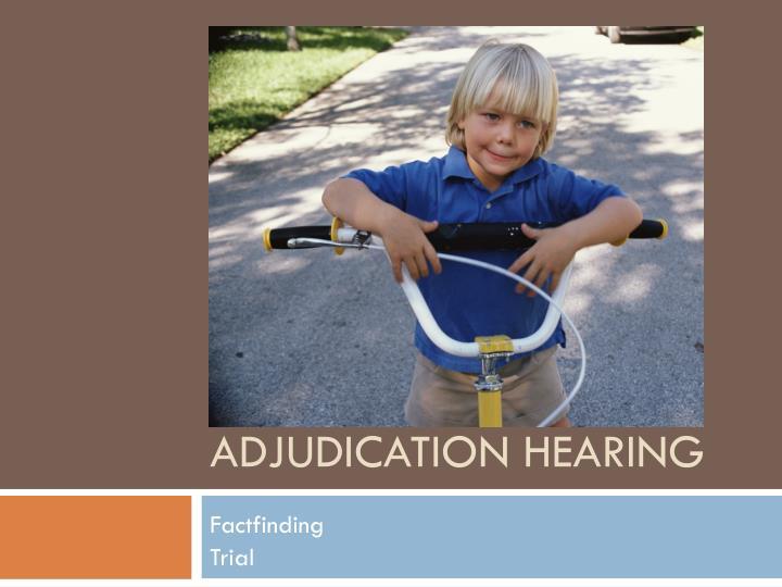 Adjudication Hearing