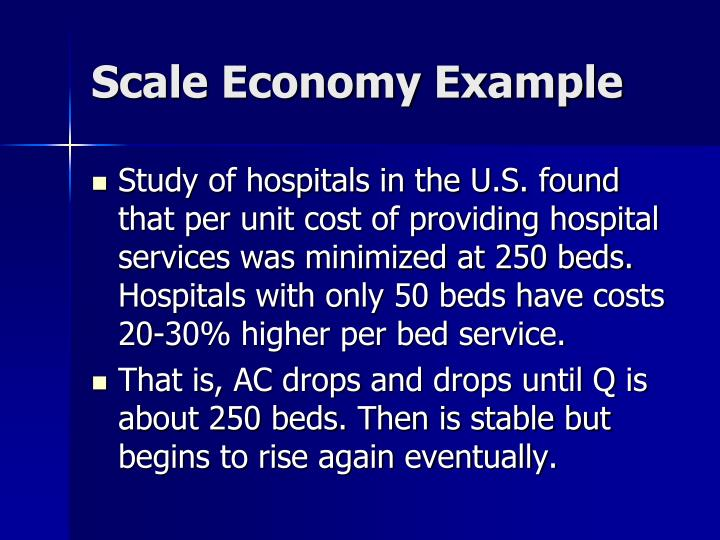 Scale Economy Example