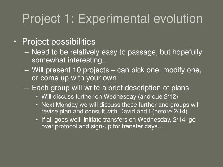 Project 1: Experimental evolution