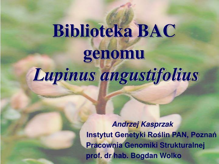 Biblioteka BAC genomu