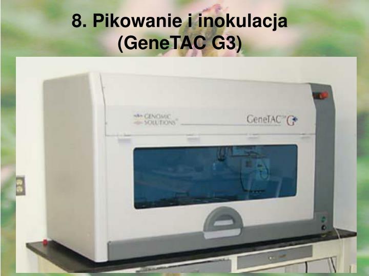 8. Pikowanie i inokulacja (GeneTAC G3)