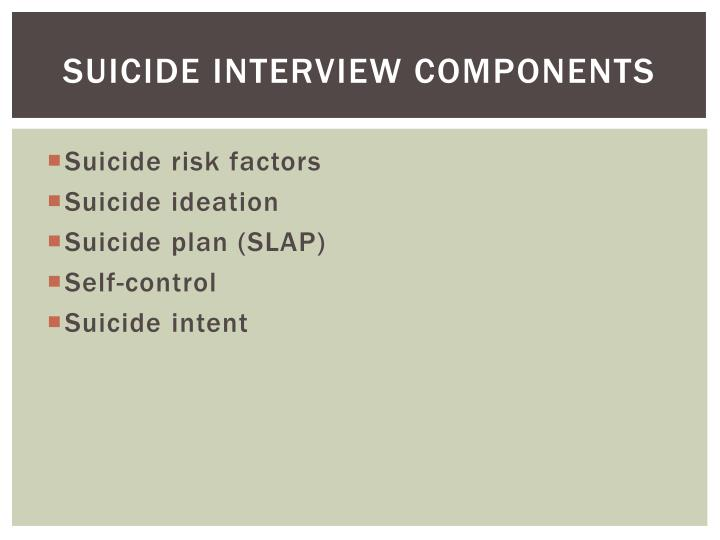 Suicide Interview Components