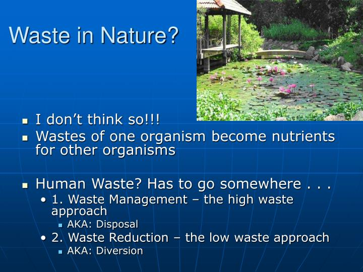 Waste in Nature?