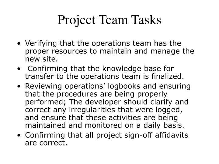 Project Team Tasks