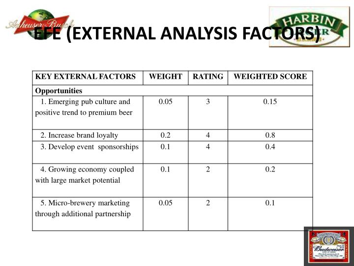 EFE (EXTERNAL ANALYSIS FACTORS