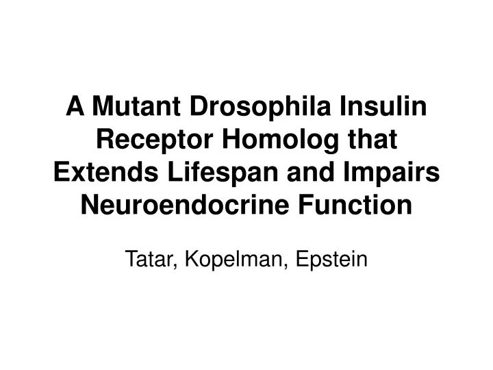 A Mutant Drosophila Insulin Receptor Homolog that Extends Lifespan and Impairs Neuroendocrine Function