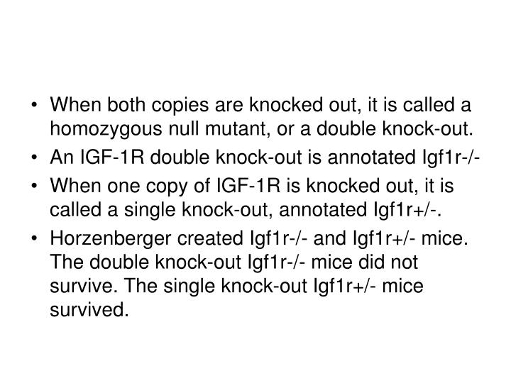 When both copies are knocked out, it is called a homozygous null mutant, or a double knock-out.