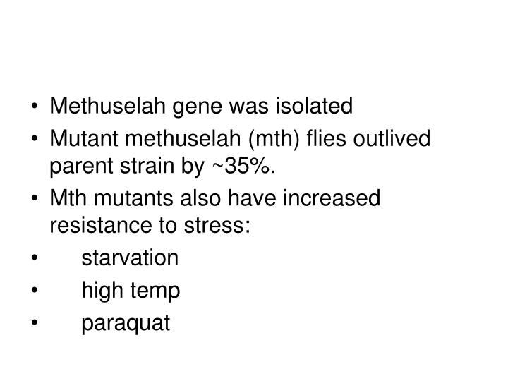 Methuselah gene was isolated