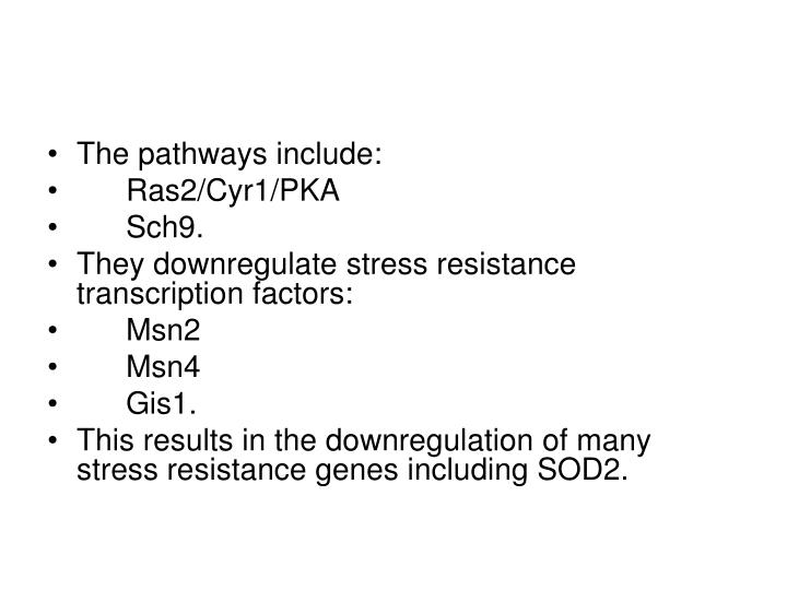 The pathways include: