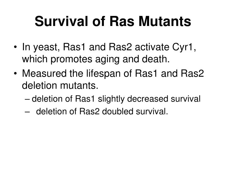 Survival of Ras Mutants