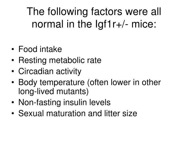 The following factors were all normal in the Igf1r+/- mice: