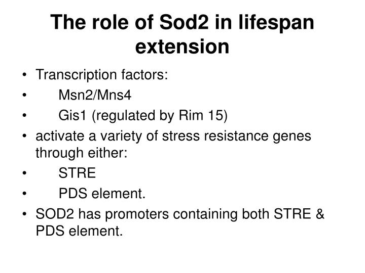 The role of Sod2 in lifespan extension