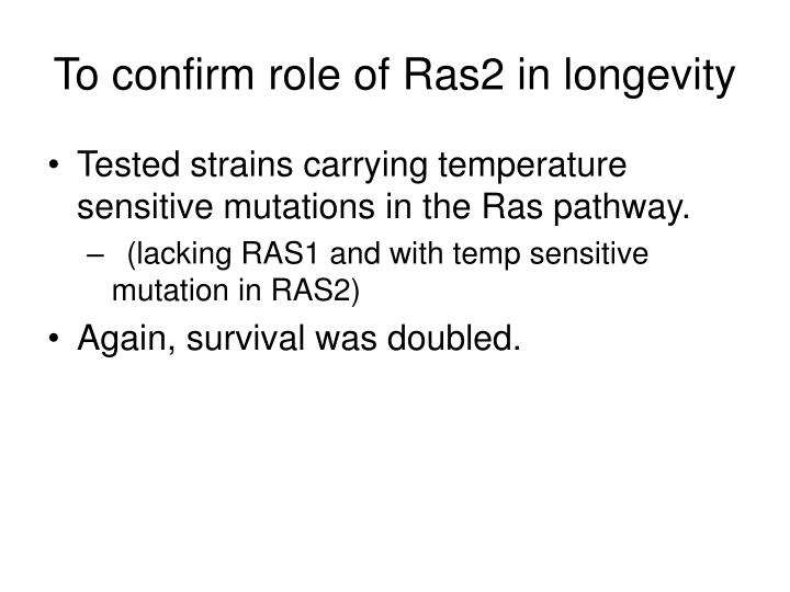 To confirm role of Ras2 in longevity