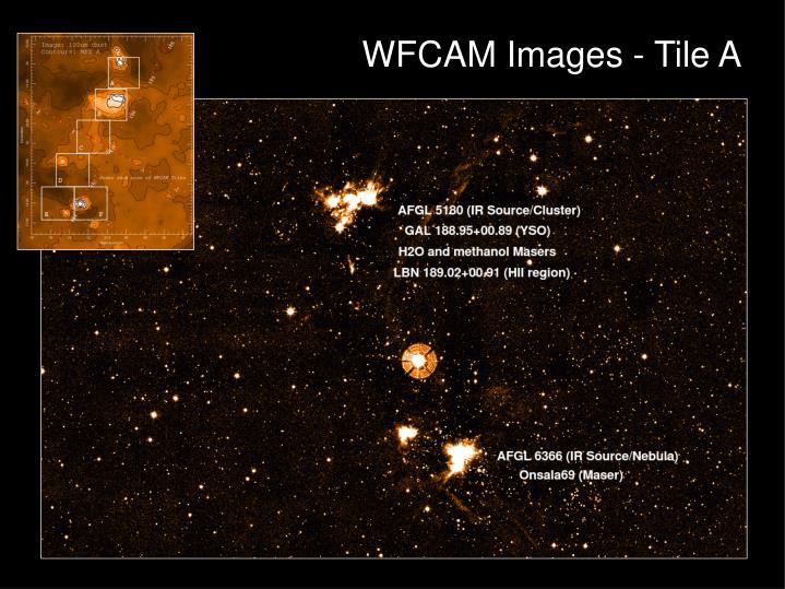 WFCAM Images - Tile A